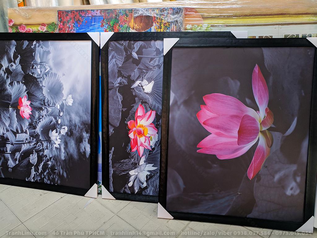 Tranh Canvas về hoa 5