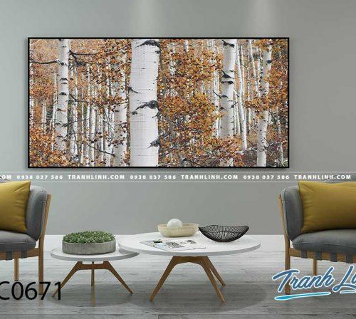 Bo tranh Canvas treo tuong trang tri phong khach phong canh PC0671