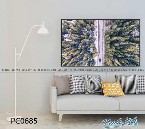Bo tranh Canvas treo tuong trang tri phong khach phong canh PC0685