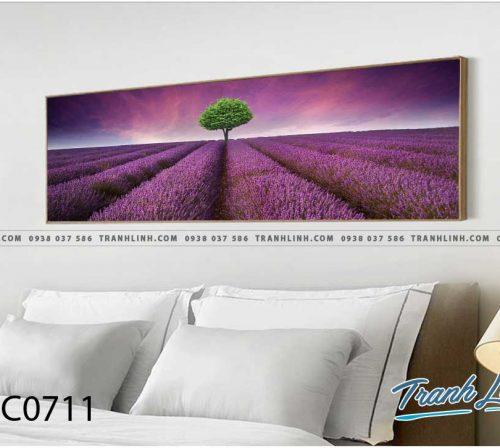 Bo tranh Canvas treo tuong trang tri phong khach phong canh PC0711