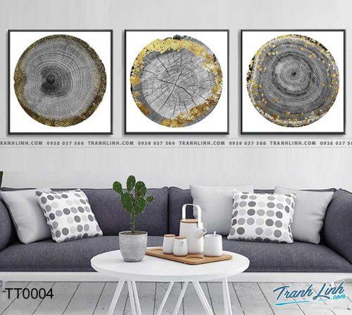 Bo tranh Canvas treo tuong trang tri phong khach truu tuong TT0004