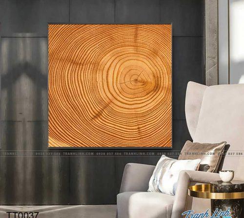 Bo tranh Canvas treo tuong trang tri phong khach truu tuong TT0037