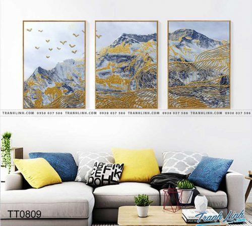 Bo tranh Canvas treo tuong trang tri phong khach truu tuong TT0809
