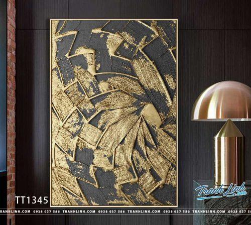 Bo tranh Canvas treo tuong trang tri phong khach truu tuong TT1345