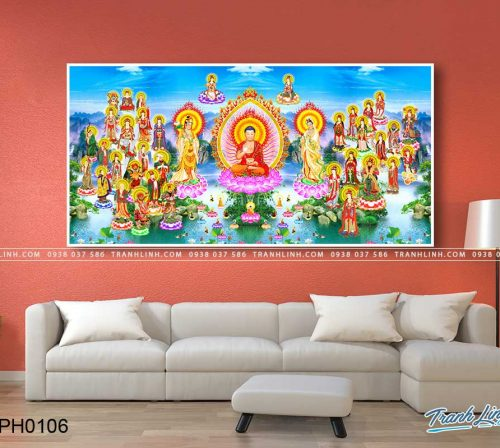 tranh canvas phat tay phuong cuc lac 11