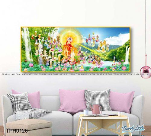tranh canvas phat tay phuong cuc lac 14