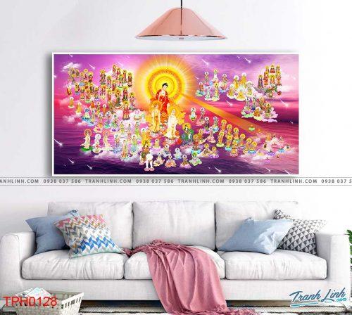tranh canvas phat tay phuong cuc lac 16