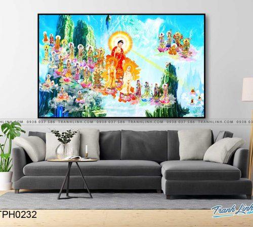 tranh canvas phat tay phuong cuc lac 17