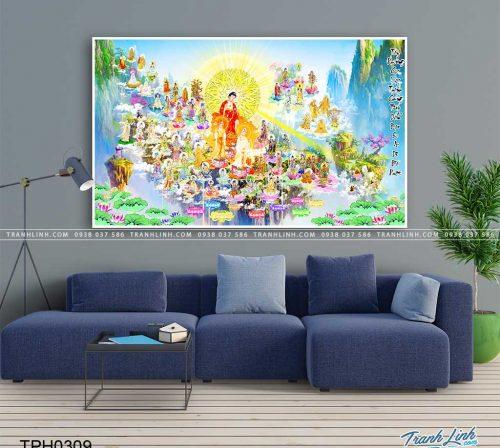 tranh canvas phat tay phuong cuc lac 22