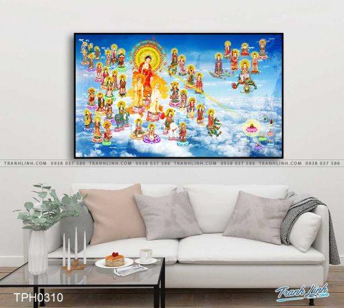tranh canvas phat tay phuong cuc lac 23