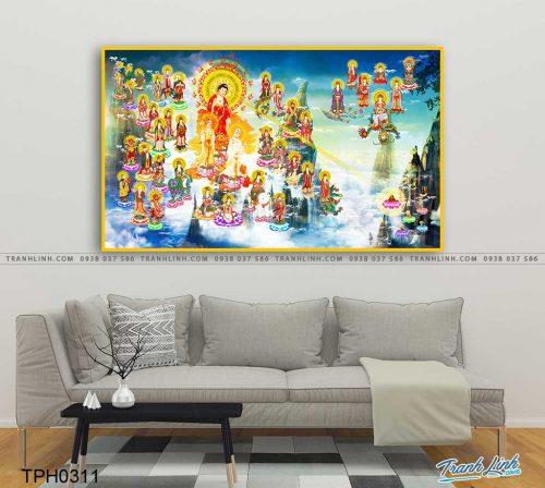 tranh canvas phat tay phuong cuc lac 24