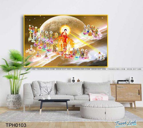 tranh canvas phat tay phuong cuc lac 8