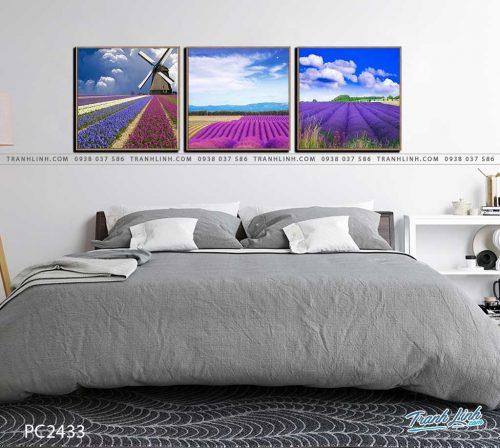 tranh canvas phong canh 2433