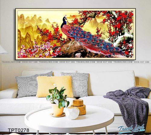 tranh canvas chim cong vuong gia 11