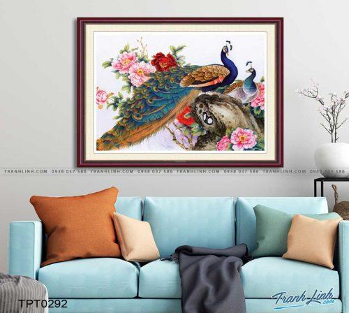 tranh canvas chim cong vuong gia 24