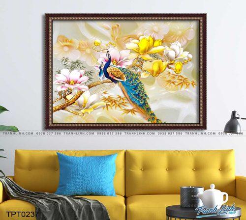 tranh canvas chim cong vuong gia 3