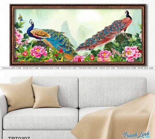 tranh canvas chim cong vuong gia 39
