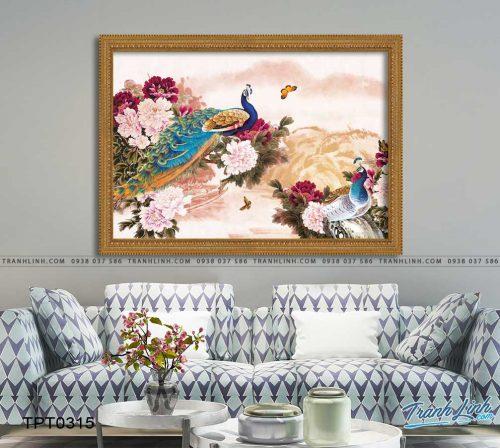 tranh canvas chim cong vuong gia 47