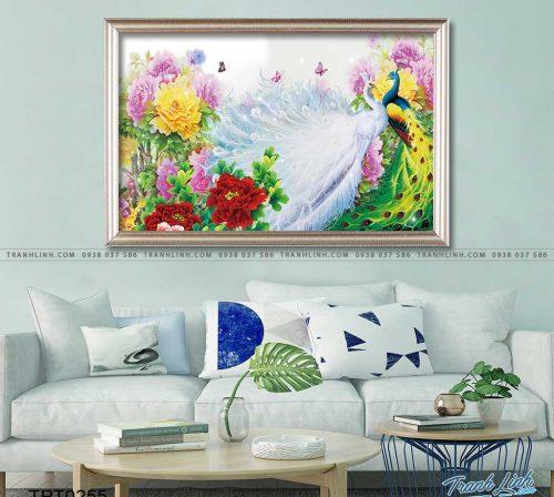 tranh canvas chim cong vuong gia 6