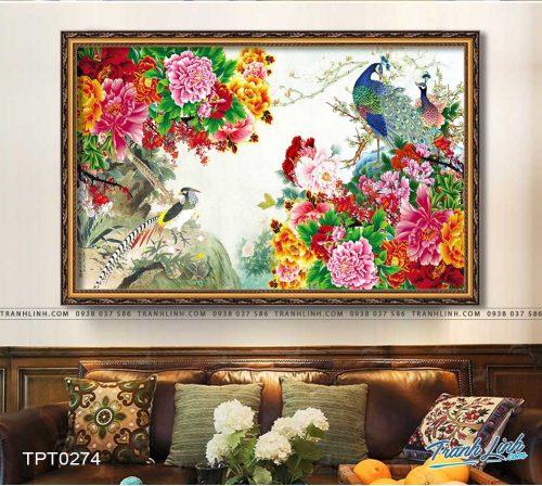 tranh canvas chim cong vuong gia 7