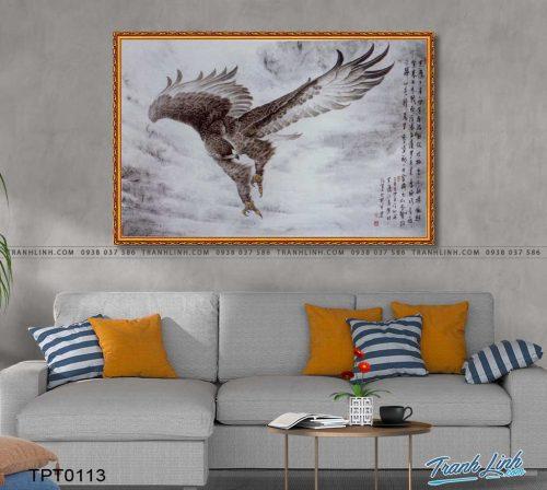 tranh canvas chim dai bang 24