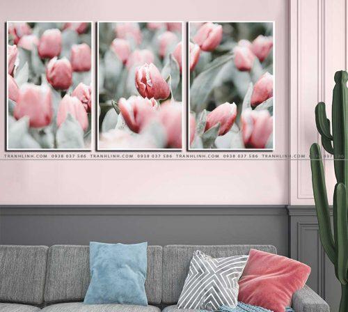 tranh canvas hoa 1185