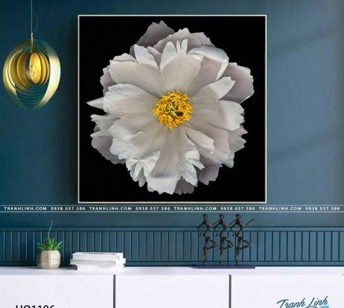tranh canvas hoa 1186