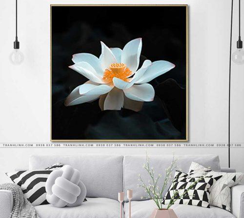 tranh canvas hoa 1236