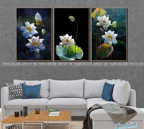 tranh canvas hoa 2151