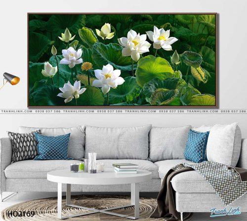 tranh canvas hoa 2169