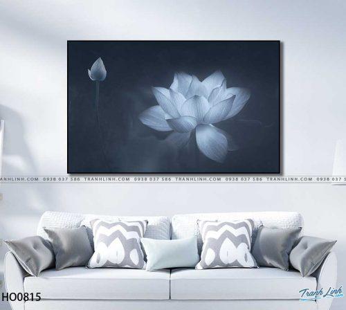 tranh canvas hoa 815