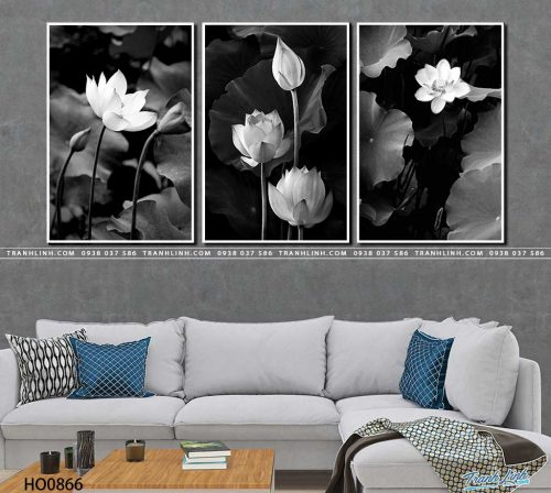 tranh canvas hoa 866
