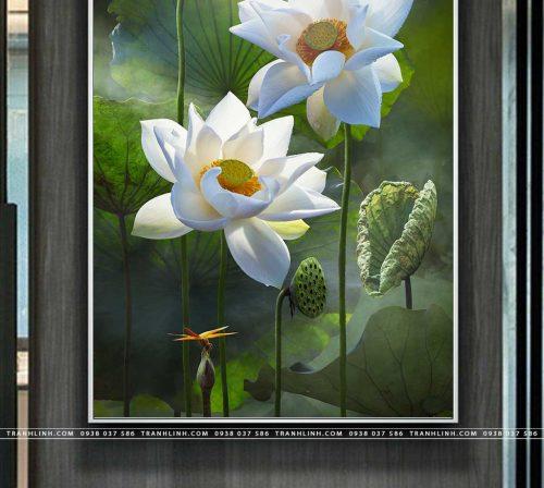 tranh canvas hoa 889