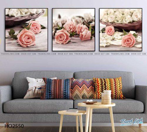 tranh hoa hong 61