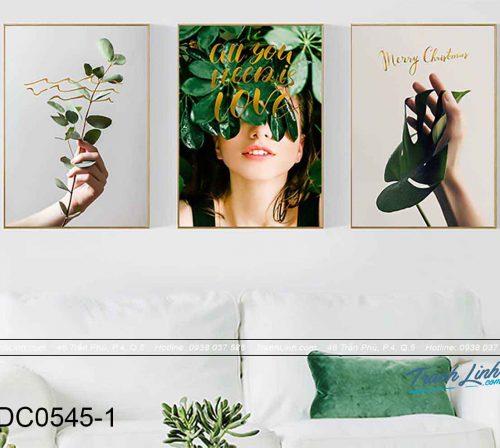 bo-tranh-canvas-trang-tri-decor-dc0545.jpg