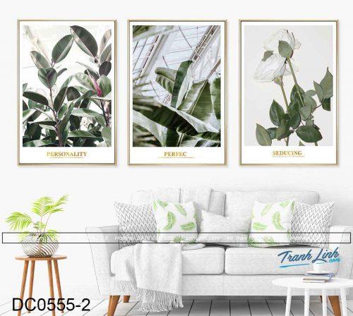 bo-tranh-canvas-trang-tri-decor-dc0555-1.jpg