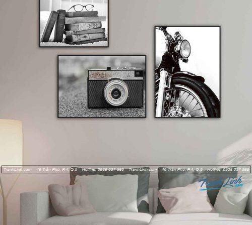 bo-tranh-canvas-treo-tuong-trang-tri-hoa-tiet-decor-dc0616.jpg